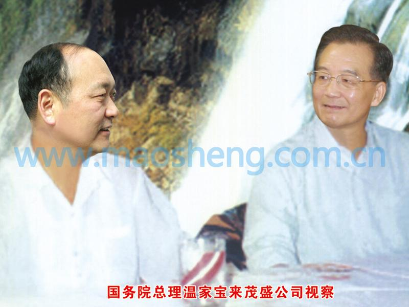 Former Chinese Premier Wen Jiabao visited our company