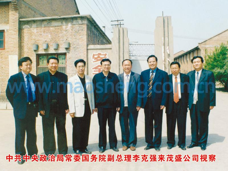 Premier Li Keqiang visited our company